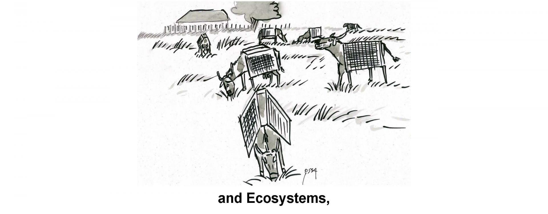 and Ecosystems,